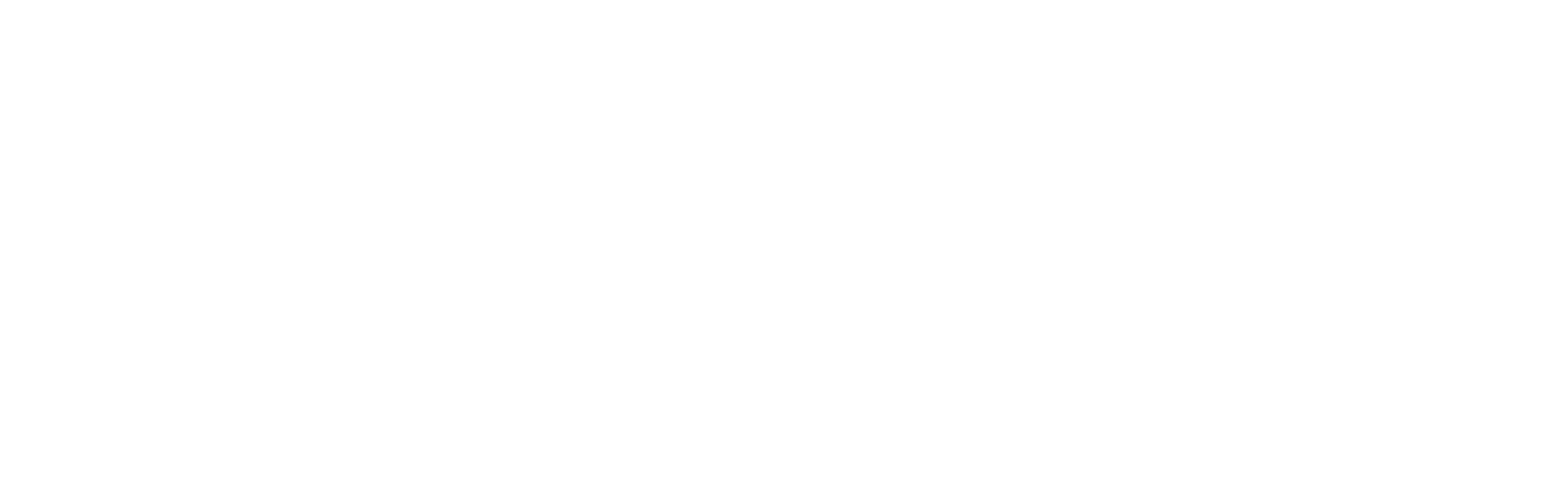 01 Primary Logo - white